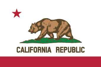 California Bounty Hunter Requirements